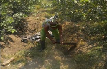 mempersiapkan lahan