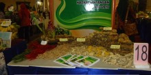 Promosi Produk Hortikultura kabupaten Pacitan